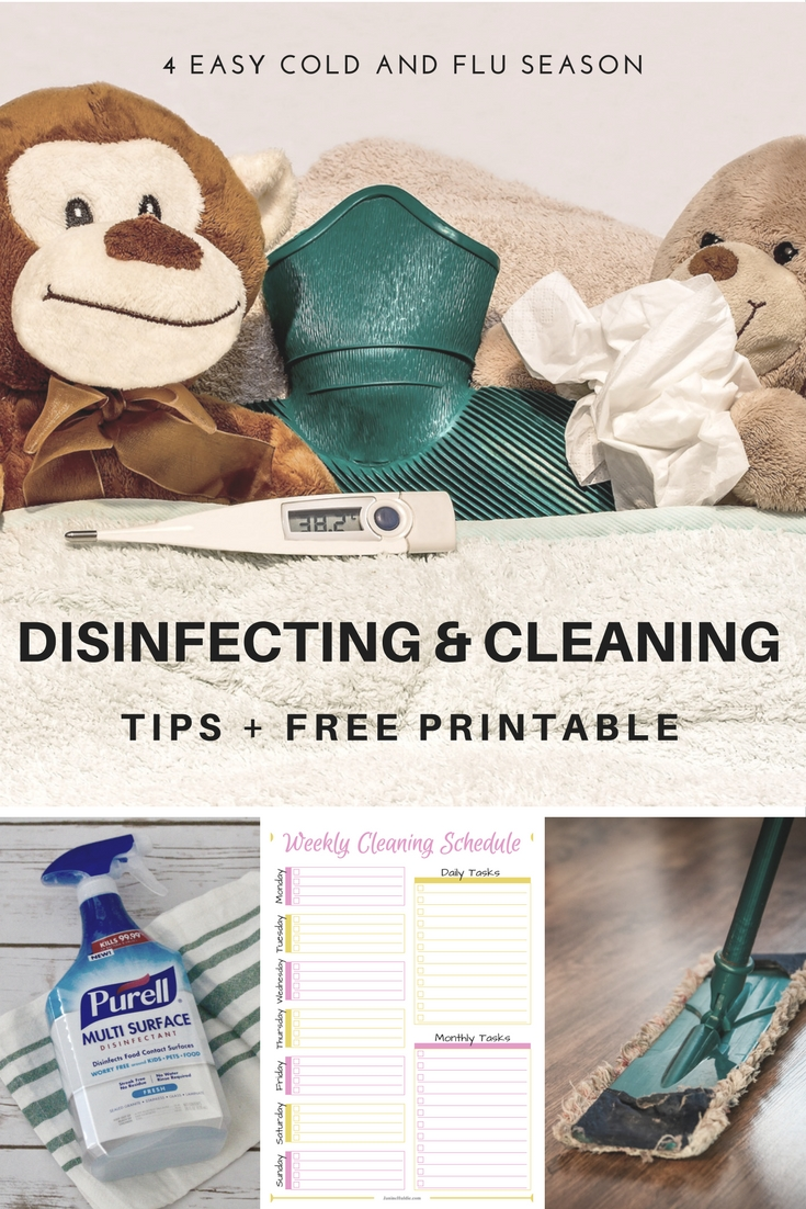 Disinfecting, This Mom's Confessions