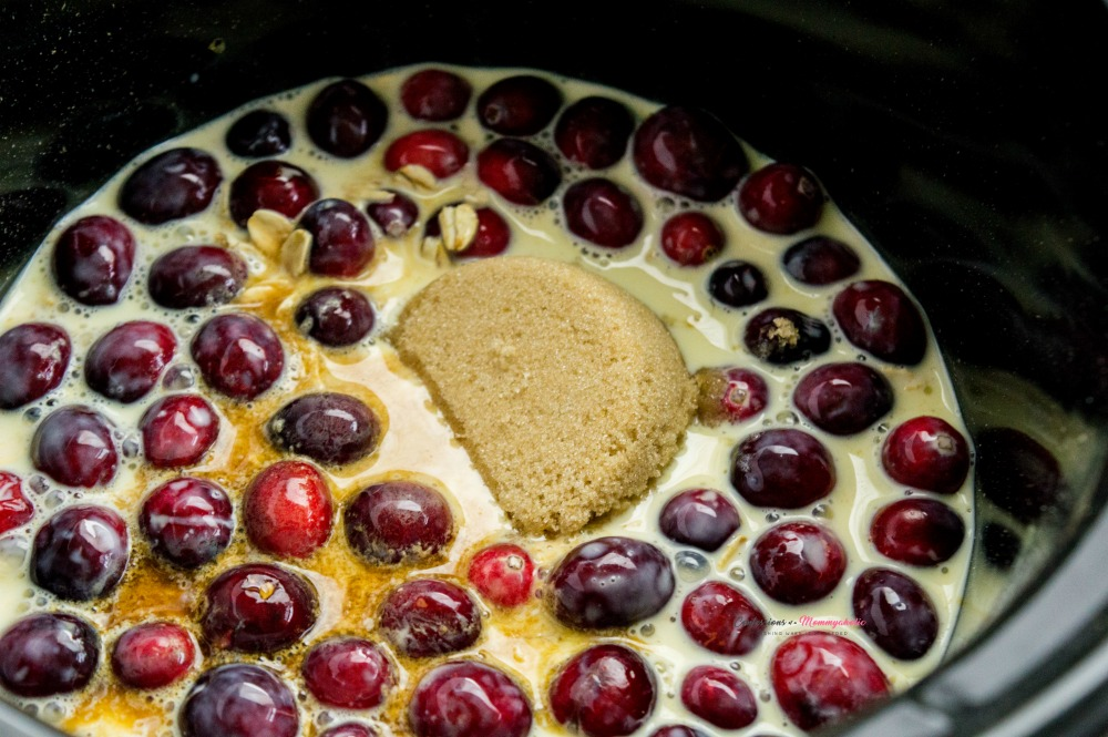 Ingredients in Crockpot for Easy Overnight Cranberry Eggnog Oatmeal Recipe