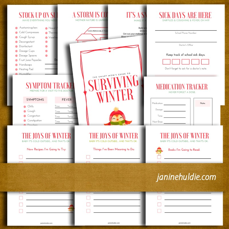 Surviving Winter Bundle 2