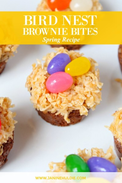 Bird Nest Brownie Bites Treats Recipe Featured Image