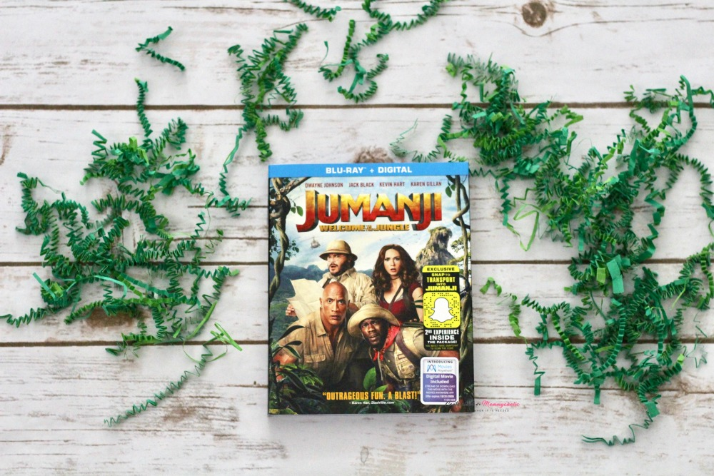 Jumanji DVD at Home