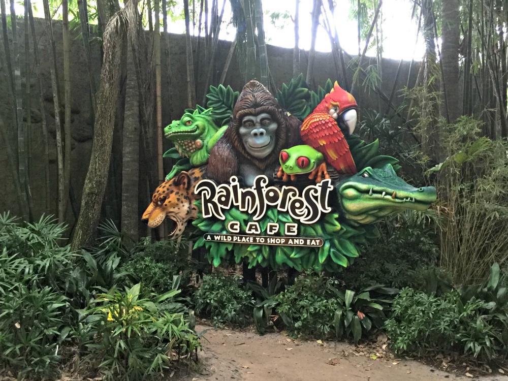 Rainforest Cafe in Animal Kingdom