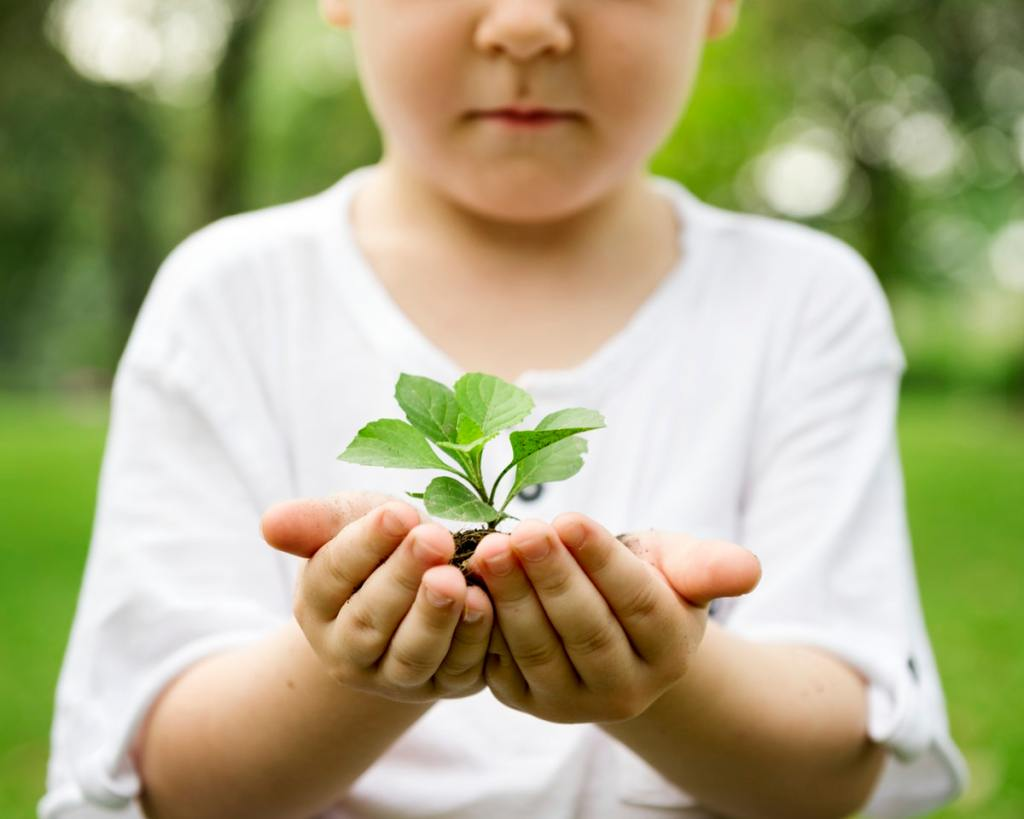 Young child with plant