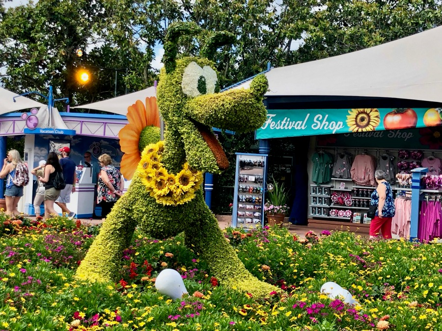 Epcot Flower and Garden Festival Pluto Flowers