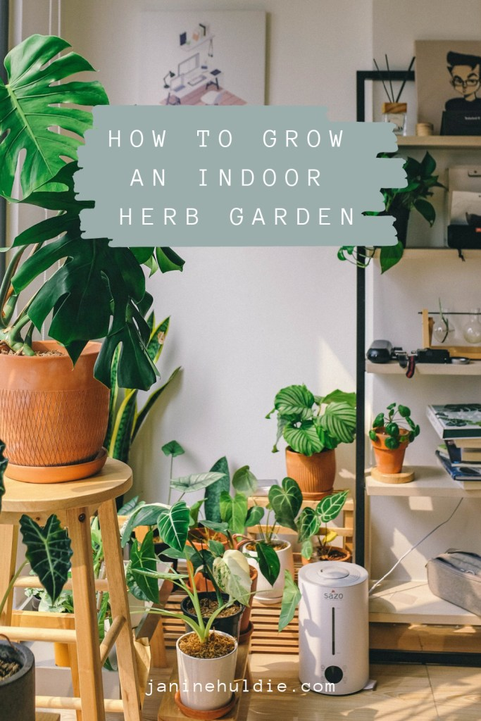 Learn How You Can Grow An Indoor Garden