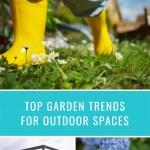 Top Garden Trends to Uplift Your Outdoor Space