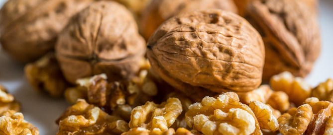 Walnuts are high in Omega 3 Oils