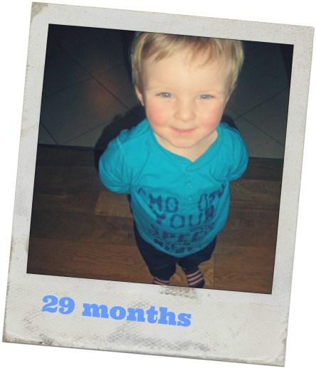 29 months