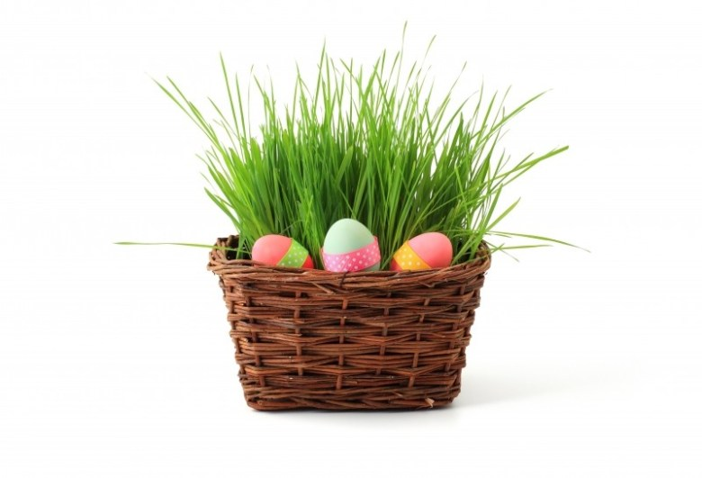 basket-celebration-decoration-easter-egg-eggs