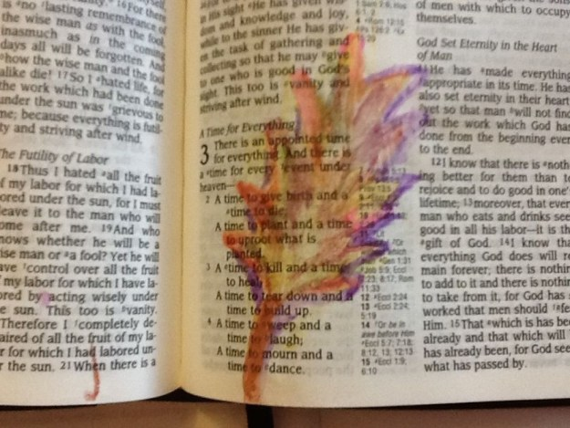 Bible journalling in watercolour Ecc 3-1