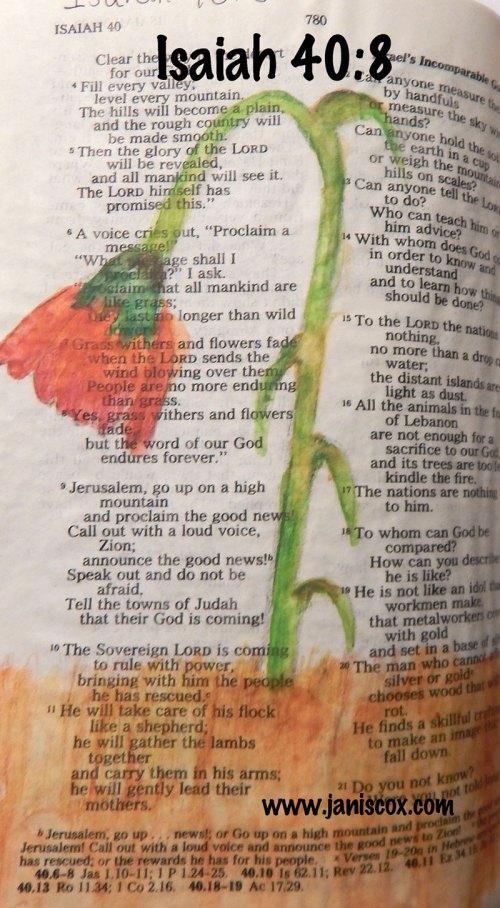 Isaiah-40-8-web
