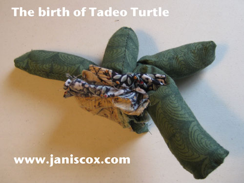the birth of Tadeo Turtle