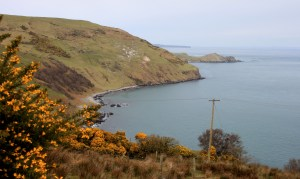 torr head road janmary