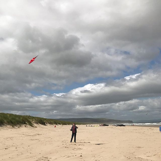 Let's go fly a kite......