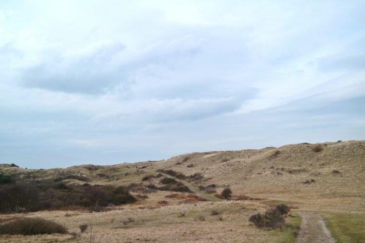 Noordhollands Duinreservaat wandelen