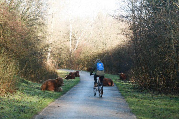 Wijk aan Zee Fahrrad fahren