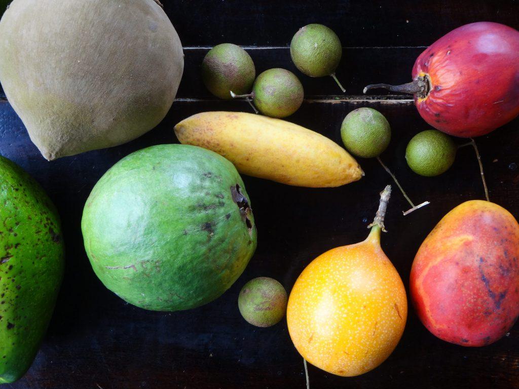 Obst Kolumbien