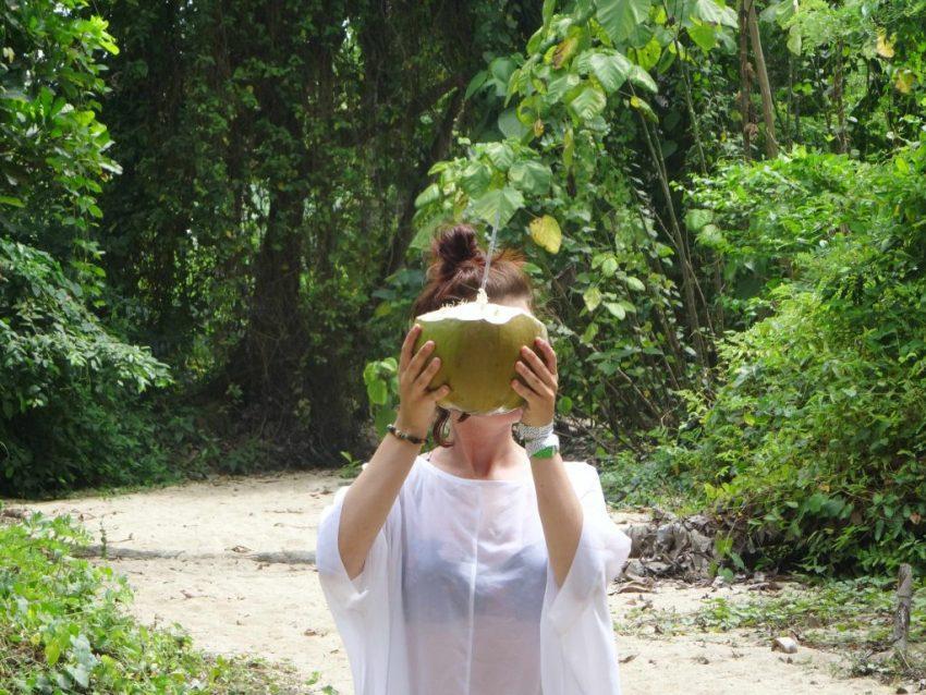 Frische Kokosnuss Kolumbien