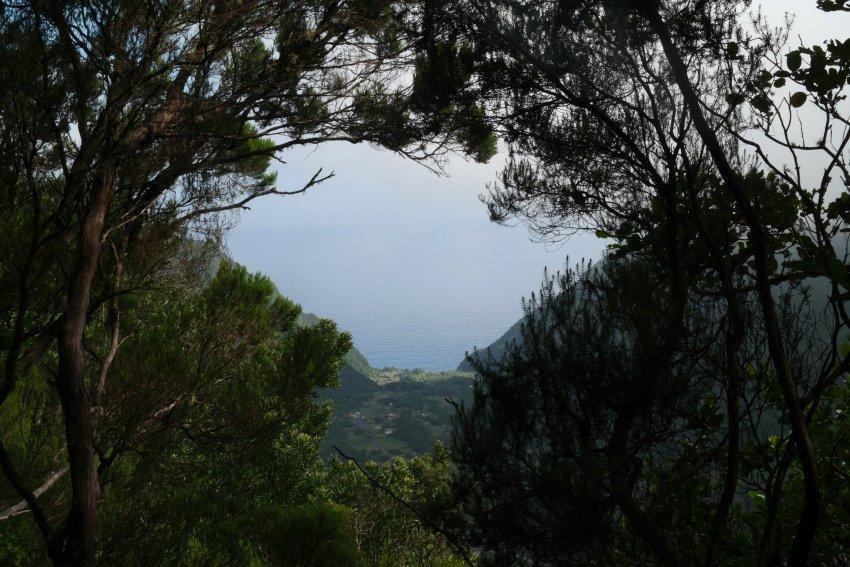 Wandelen Laurisilvia Madeira