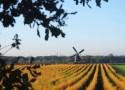 Wandelen Midden-Limburg
