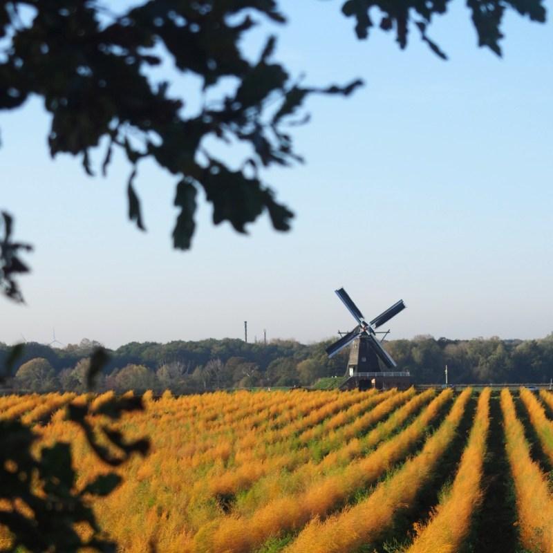 Niederlande Aktiv Duitse reisblog over Nederland