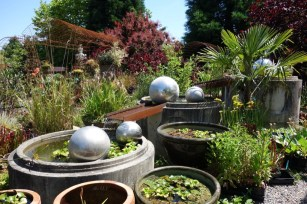 Dig_Nursery_waterfeature2