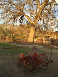 Strohn_Ranch.1600