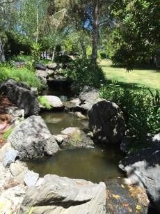 step ponds.1280