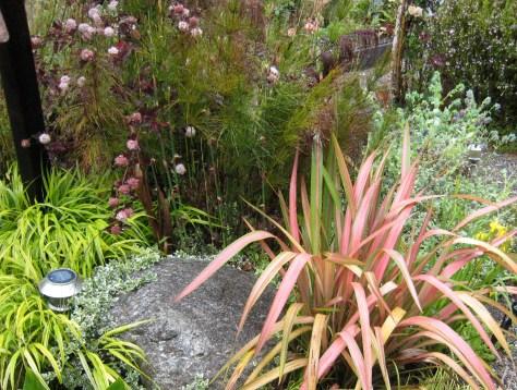 Vignette composed of Summer Wine physocarpus, Phormium 'Jester', Elegia capensis, and Japanese Forest Grass
