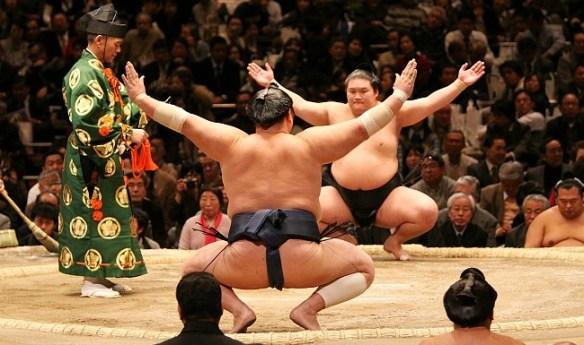 Image result for tokyo sumo wrestling