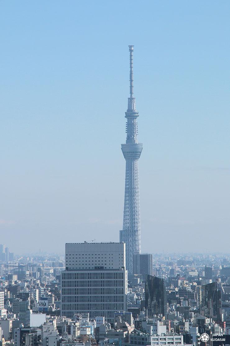 Vue sur la tour Tokyo Skytree depuis le Bunkyo civic center