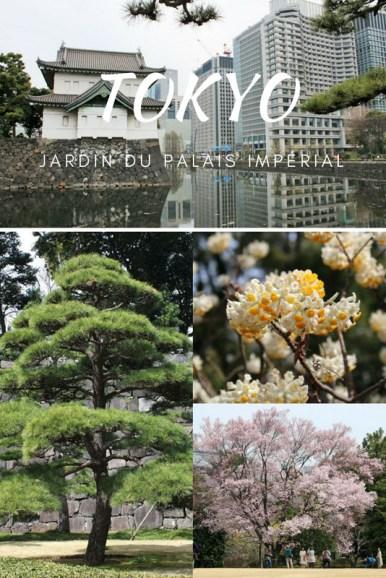 East-garden-002