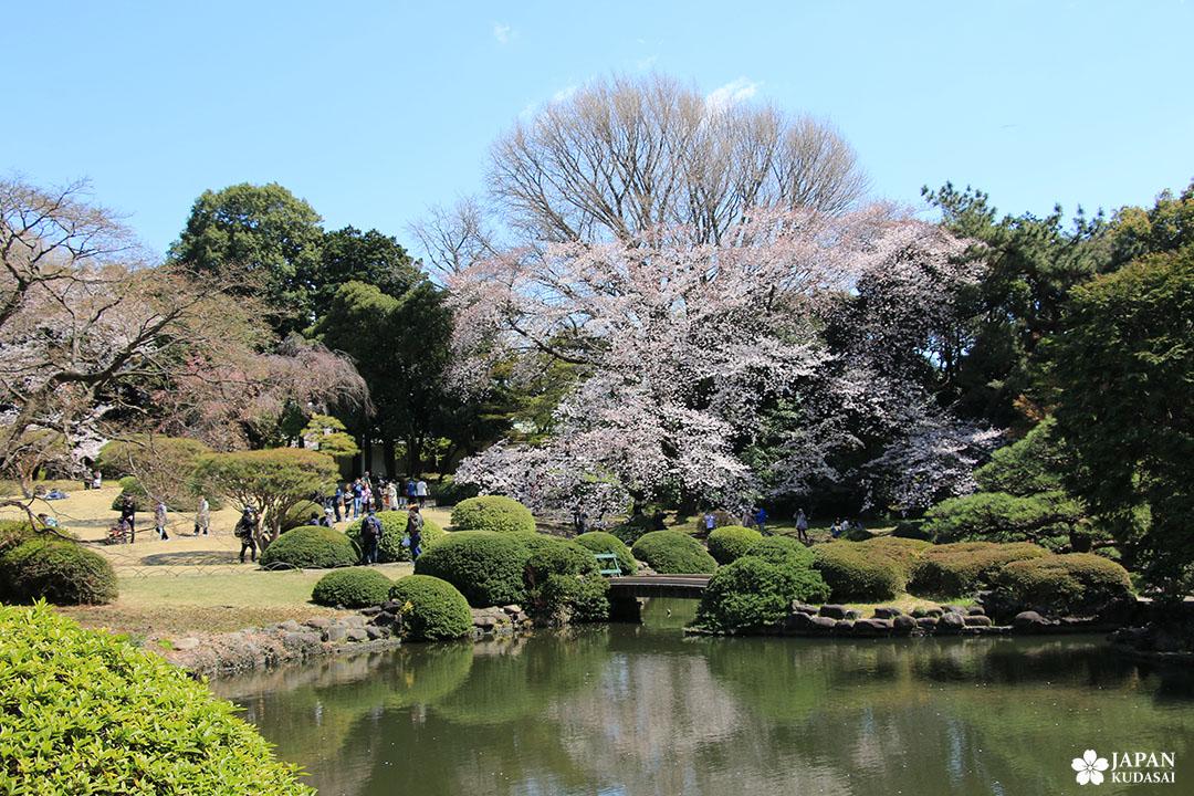 shinjuku gyoen - section du jardin japonais traditionnel