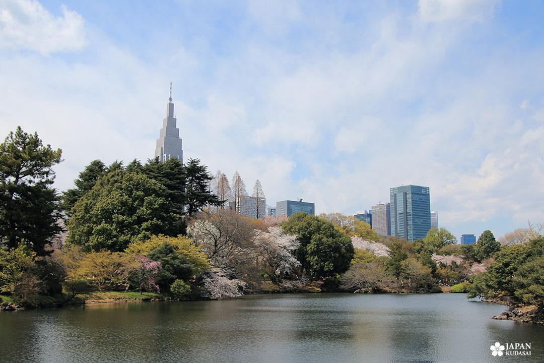 NTT Docomo yoyogi building skyline shinjuku gyoen