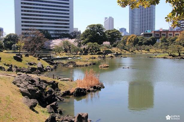 Jardin Kyu-Shiba-rykyu garden de Tokyo (5)