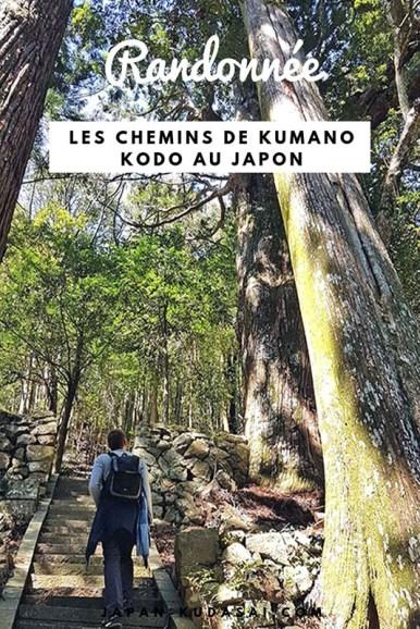 Rando sur le sentier Nakahechi, sur les traces des pèlerins japonais
