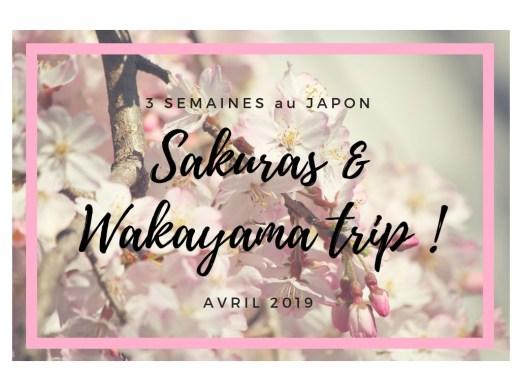 Circuit de 3 semaines au Japon : admirer les cerisiers au printemps et découvrir la préfecture de Wakayama