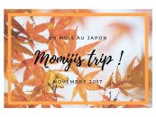 Automne 2017 - Voyage d'un mois au Japon : c'est parti !