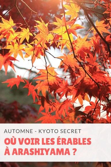 adashino-kyoto-01