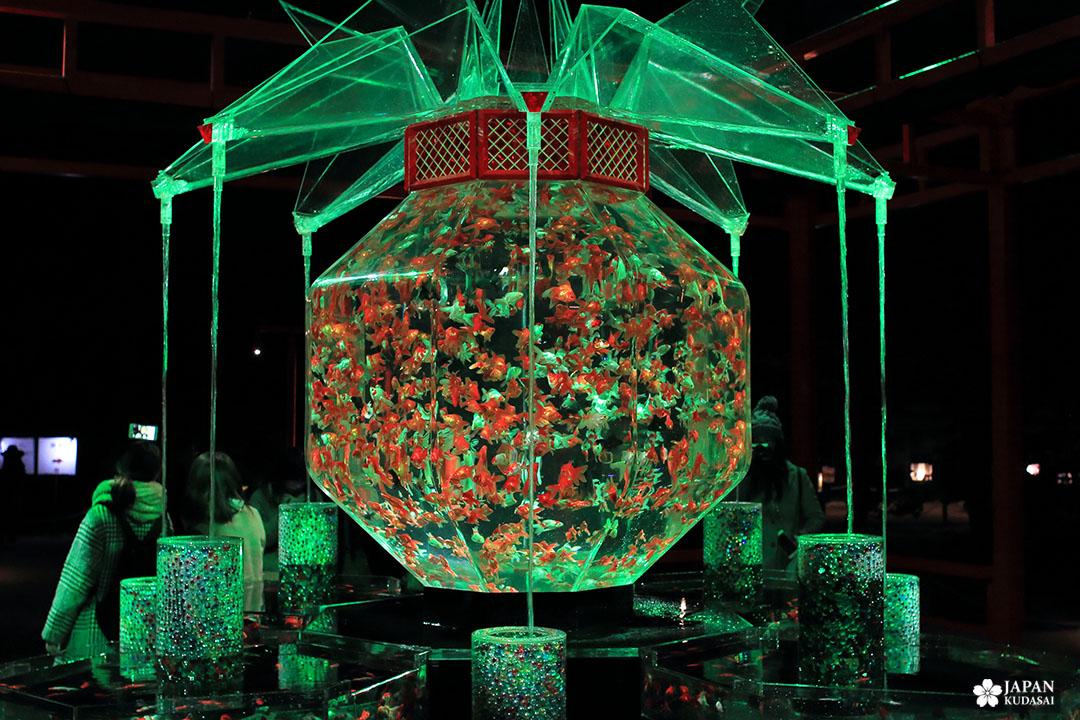 aquarium à débordement futuriste design asiatique