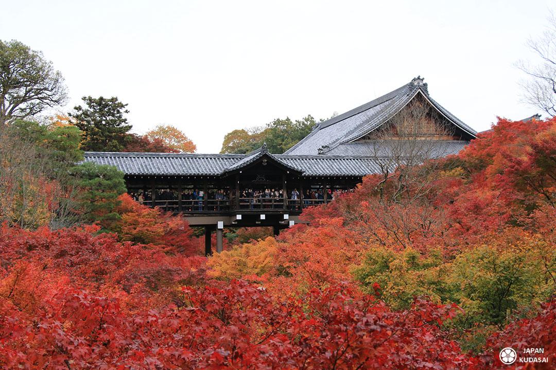 vallée des érables au temple tofokuji au sud de kyoto la capitale impériale