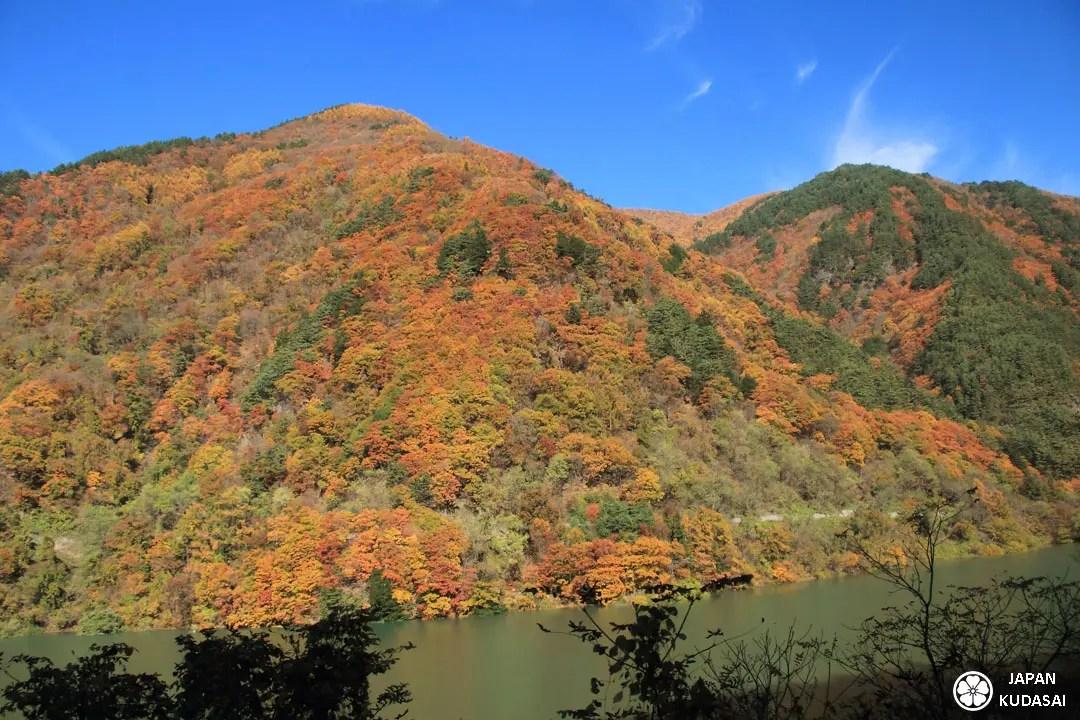 Les feuilles d'automne et surtout celles de momiji sont magnifiques lors d'un voyage au Japon à l'automne : à voir absolument dans les Alpes japonaises dans la préfecture de Nagano