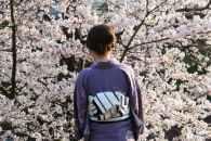 """""""Keage incline"""" : la voie ferrée aux cerisiers de Kyoto"""
