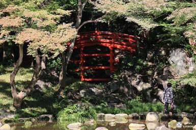 koishikawa-korakuen (10)