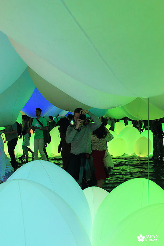 teamlab en version verte