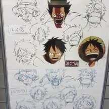 expo-one-piece-luffy