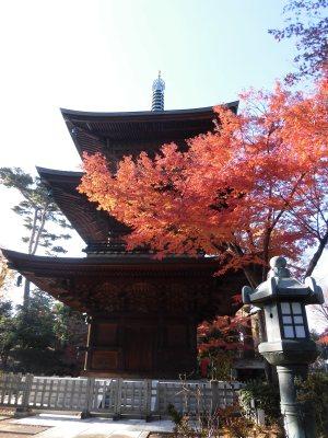 Gotokuji Temple | Tokyo