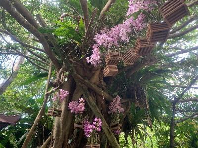 Five Fun Day Trip Destinations on Okinawa Main Island