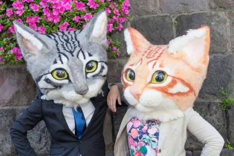 catheads 1