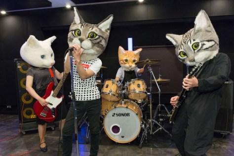 catheads 3